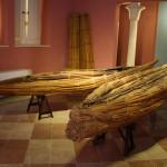 museo del papiro siracusa